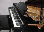 Duluth Minnesota Grand Pianos For Sale